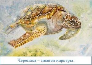 Черепаха – символ карьеры.