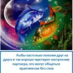 Совместимость Рыб и Рыб