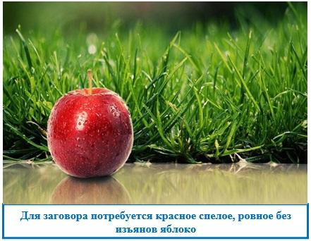 Для заговора потребуется красное спелое, ровное без изъянов яблоко