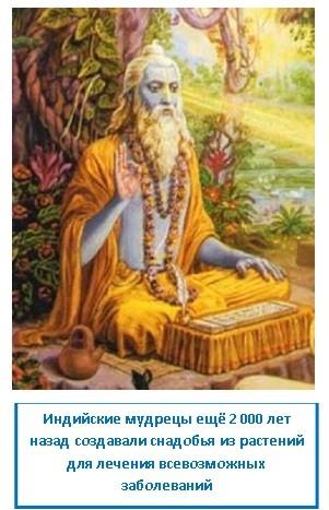 Индийские мудрецы ещё 2 000 лет назад создавали снадобья из растений для лечения всевозможных заболеваний