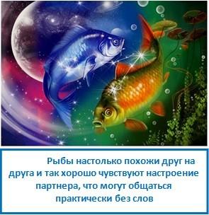 Рыбы настолько похожи друг на друга и так хорошо чувствуют настроение партнера, что могут общаться практически без слов