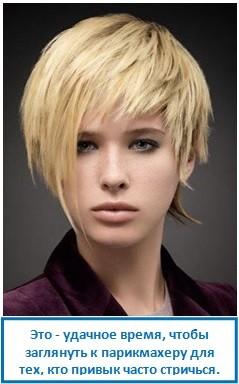Это - удачное время, чтобы заглянуть к парикмахеру для тех, кто привык часто стричься.