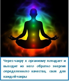 Через чакру к организму попадает и выходит из него обратно энергия определенного качества, своя для каждой чакры
