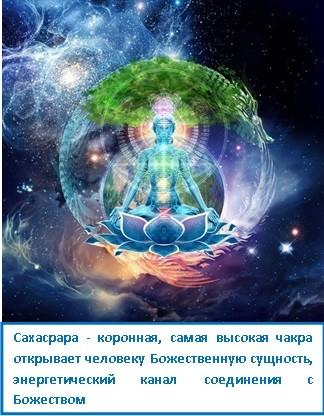 Сахасрара - коронная, самая высокая чакра открывает человеку Божественную сущность, энергетический канал соединения с Божеством