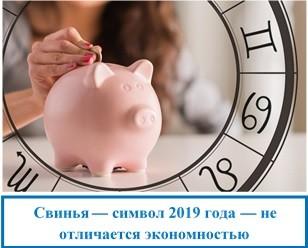 Свинья — символ 2019 года — не отличается экономностью
