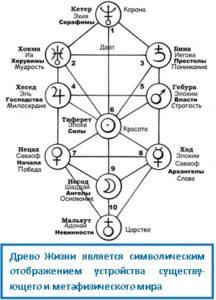 Древо Жизни является символическим отображением устройства существу-ющего и метафизического мира